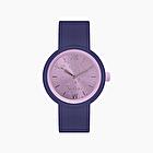 O clock iris blue silver leaf valerian